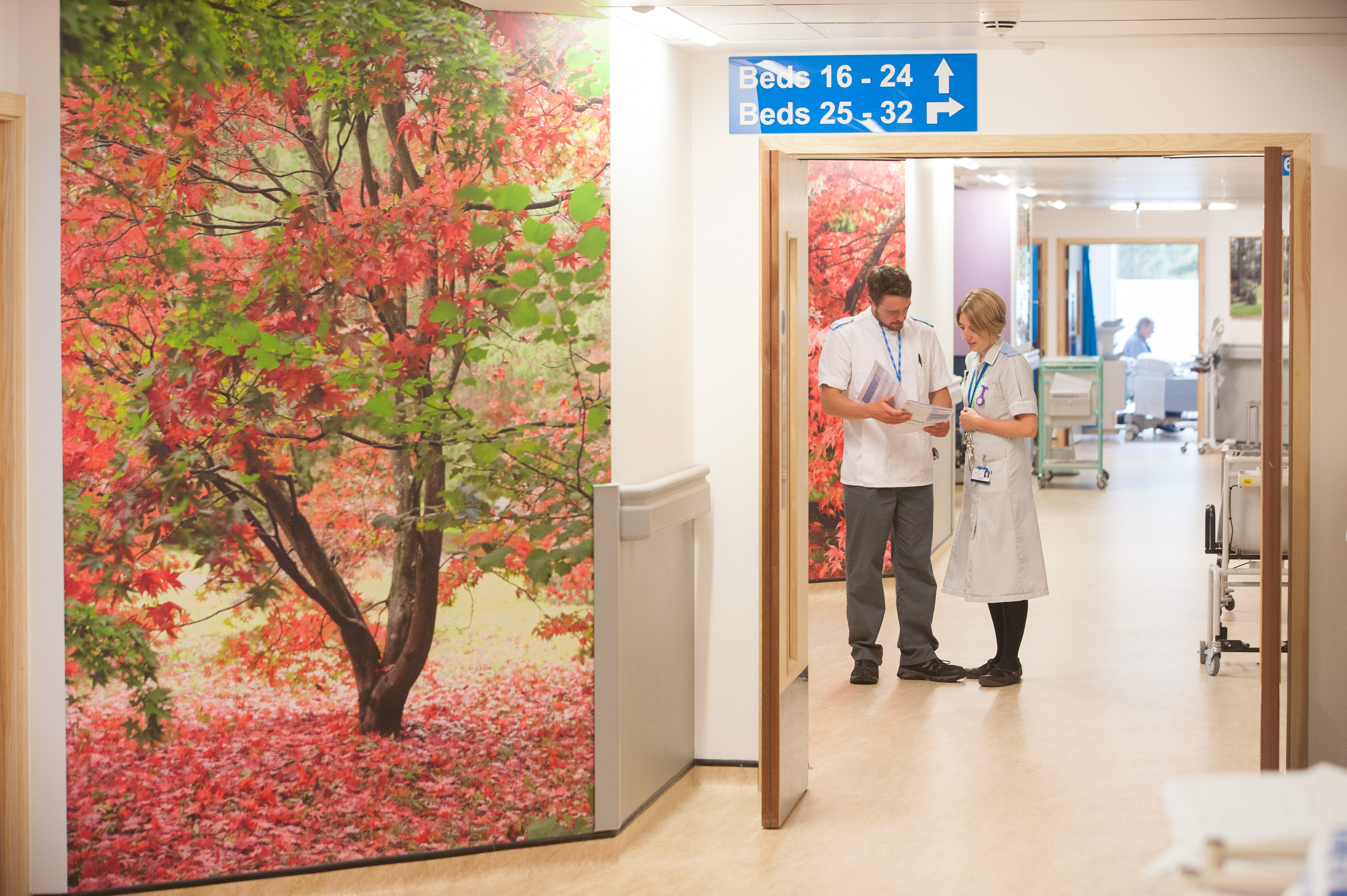 wall vinyl by Simon Roberts for Bristol Royal Infirmary. Photo by Clint Randall
