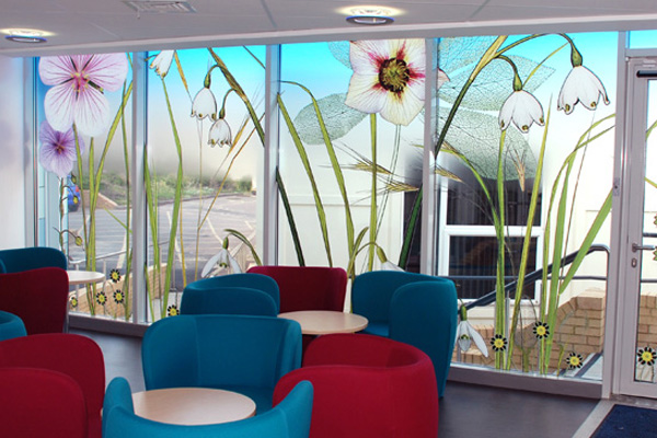 Window vinyl by Marion Brandis in waiting area at Macmillan Haematology Outpatients, Northampton General Hospital. Photo by Marion Brandis.